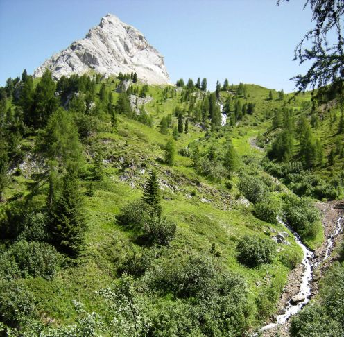 Panorama of the Alpine meadows